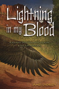 Lightning in My Blood, by James Endredy