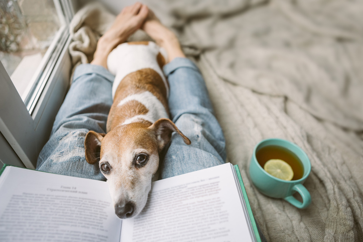 Relaxing with Dog and Book