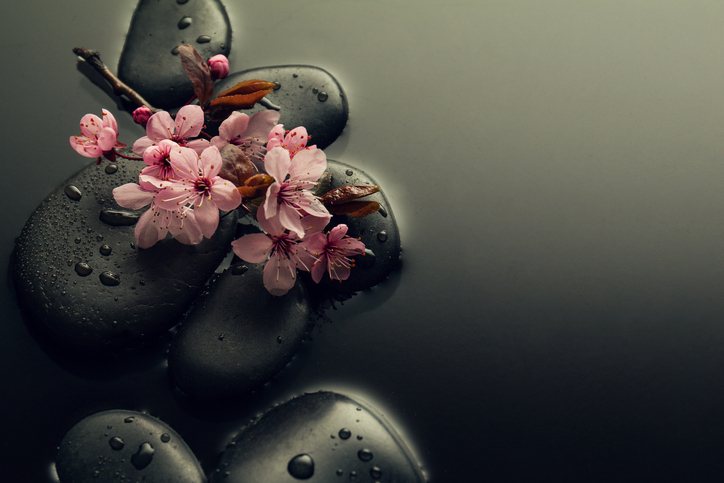 Zen Stones and Lotus in Water
