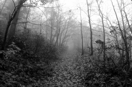 haunted path