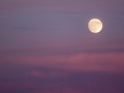 How to Read a Lunar Return—Yours or Anyone's