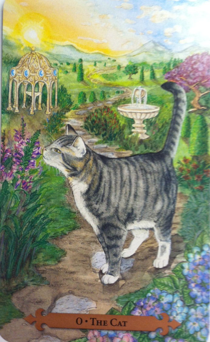 Cat from Mystical Cats Tarot