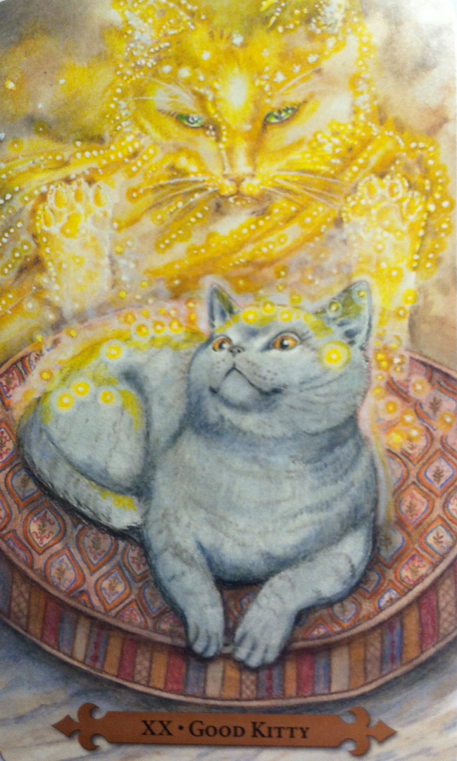 Good Kitty from Mystical Cats Tarot