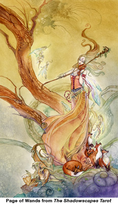 The Shadowscapes Tarot - Page of Wands