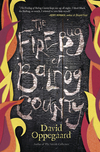 The Firebug of Balrog County