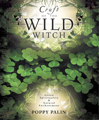 Craft of the Wild Witch