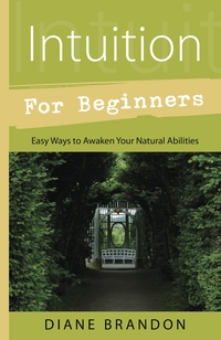 Intuition for Beginners