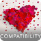 The Compatibility Report