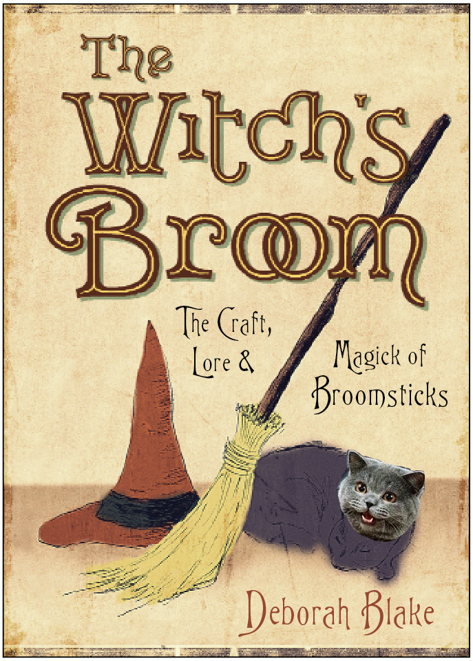 WitchsBroom Lisa lolcat