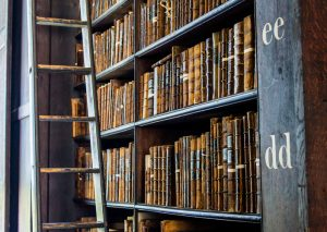 Bookshelves of an Old Library